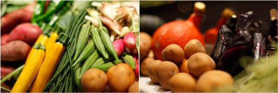 メニューに登場した「太陽と雨」の元気な野菜たち